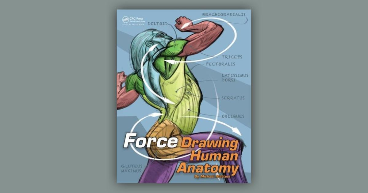 Booko: Comparing prices for Drawing Human Anatomy with ...